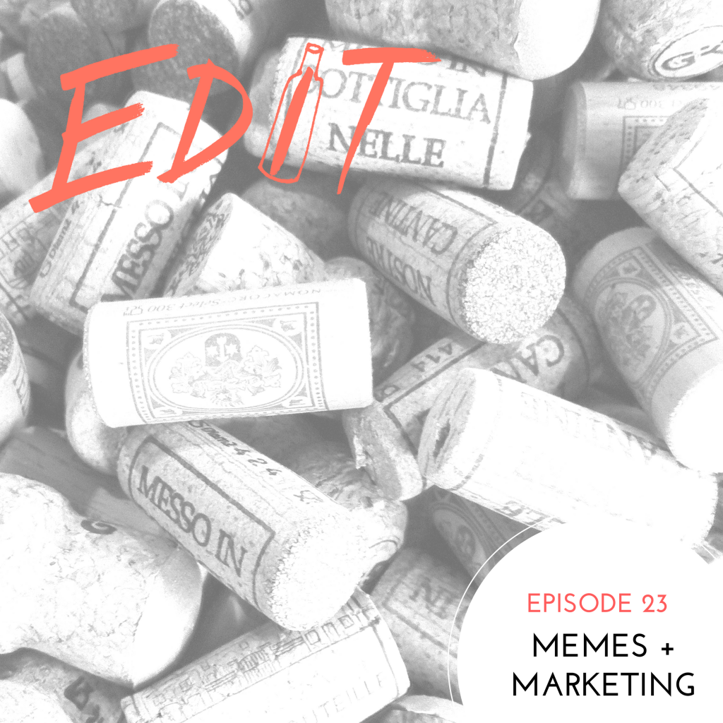 Episode 23 – Memes + Marketing